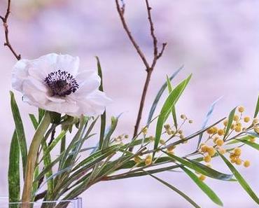 Friday-Flowerday 01/17