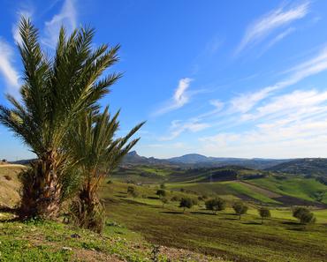 Frei stehen in Marokko – ein Abenteuer der anderen Art