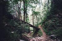 Der Landrat-Lucas-Weg