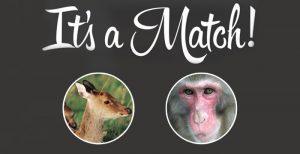Dieser Affe ist unglücklich verliebt! :(