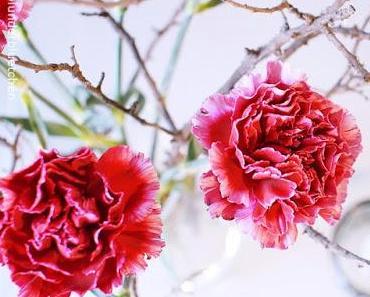 Friday-Flowerday 02/16