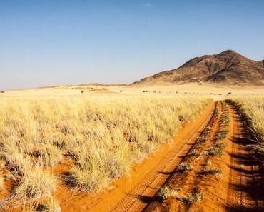 Eine 4×4 Selbstfahrer Safari durch Namibia vorbereiten