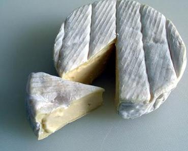 Camembert de Normandie | Weichkäse | AOC/AOP