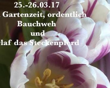 WiB 25.-26.03.17- Steckenpferd, Garten und Bauchweh