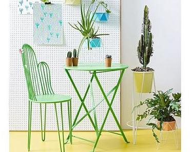 Mein kleiner, grüner Kaktus..