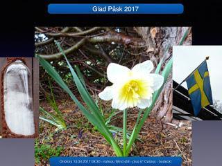 Ostern 2017 - Sturmglas was ist dran - Ergebnis eines Langzeitversuches