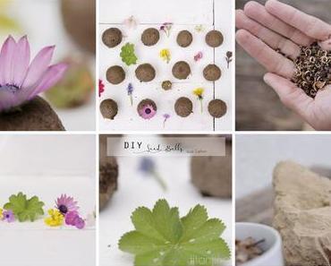 DIY Seedbombs - titantinas Gartenecke