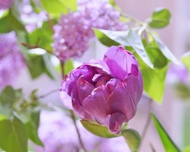 Friday-Flowerday 16/17