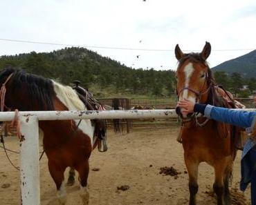 Colorado – Reiten in den Rocky Mountains & Fahrt über die Trail Ridge Road
