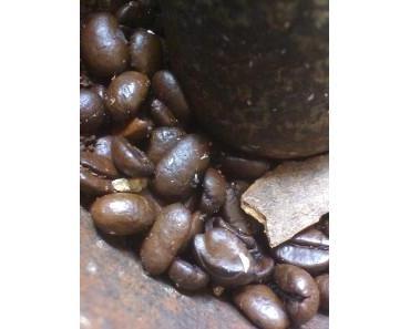 Gewürzter Kaffee statt Rein