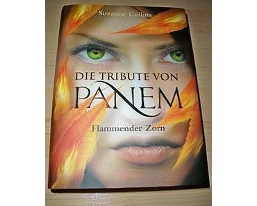 """[REZENSION] """"Die Tribute von Panem.Flammender Zorn"""" (Band 3)"""