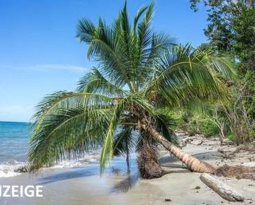Travellers Insight: Fernweh pur und Geheimtipps ohne Ende