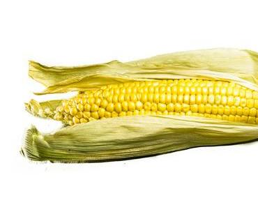 Tag des Maiskolbens – der US-amerikanische National Corn on the Cob Day