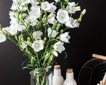 Weiße Glockenblumen aus Mutters Garten