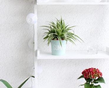 DIY Blumentöpfe mit Lettering   PaStell Dich auf den Sommer ein