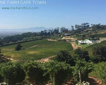 Cheers! Auf die schönsten Weingüter in Kapstadt.