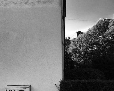 Christine Franz: Bunch Of Kunst - Eine wahre Geschichte