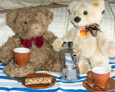 Tag des Teddybär-Picknicks – der Teddy Bear Picnic Day