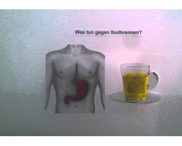 ᐅ Tee gegen Sodbrennen – was ist dran am Mythos? (2017)