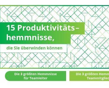 Die 15 wichtigsten Hemmnisse, die Produktivität in Ihrem Team verhindern