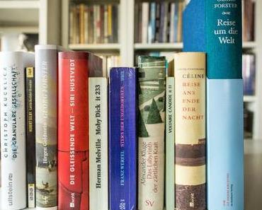 Tag der Buchliebhaber – der amerikanische National Book Lovers Day