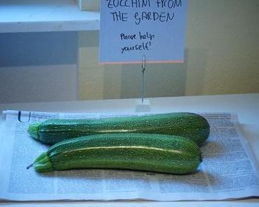 Eine Antwort auf die Zucchinischwemme: eingelete Zucchini