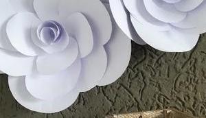 Papierblumen tolle Deko einzeln oder Blumenwand