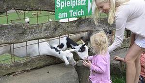 Tierparks Saarland unser neues Reisevideo