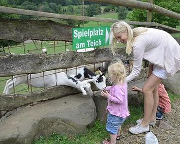 Tierparks im Saarland – unser neues Reisevideo