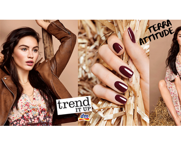 [Preview] trend IT UP Terra Attitude Limited Edition