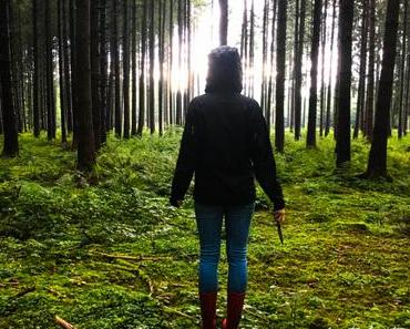 Pilze sammeln – Das Gold des Waldes