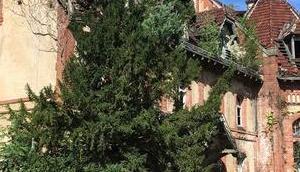 Schaurig schön Beelitz Heilstätten Berlin