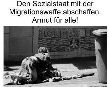 Den Sozialstaat mit der Migrationswaffe abschaffen, ist das politische Ziel