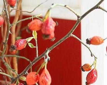 Herbstdeko in der Vase