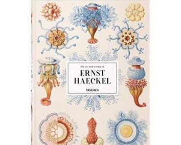 """Leserrezension zu """"The Art and Science of Ernst Haeckel"""" von Rainer Willmann und Julia Voss"""