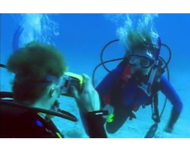Hai Horror #2 | OPEN WATER (2003) mit echten Haien