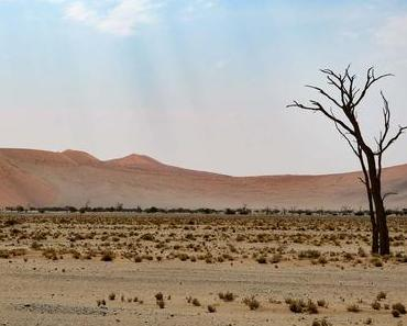 Sossusvlei – Zwei perfekte Tage in den Dünen Namibias