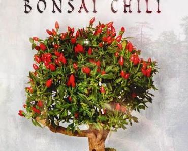 Bonchi - Bonsai Chili - Fatalii Media