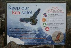 Naturschutz Nachrichten Neuseeland