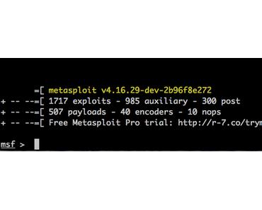Wie kann Metasploit an Neujahr auf dem Raspberry Pi Zero W mit Ruby in 3 Stunden installiert werden?