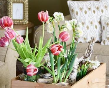 Hallo Frühling - ich freue mich auf dich!