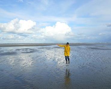 Ameland im Winter: Eine Nordseeinsel im Wettstreit der Elemente
