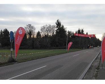 Bericht: Winterlaufserie Rheinzabern (15km)