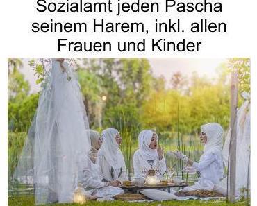 In Arabien muss der Pascha seine Großfamilie, inkl. Harem, selbst versorgen, in Deutschland übernimmt es das Sozialamt (Steuerzahler)