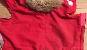 Alte Skihose Hundekaisers neue Kleider