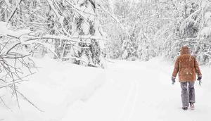 Hotel Hubertus Alpin Lodge Auszeit Bayerisch Sibirien