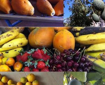 Früchteluxus – auch für dich