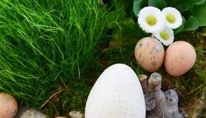 Warum wird Ostern immer weniger dekoriert? Oder: natürliche Osterdeko Mrs. Eclectic