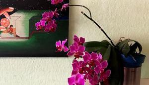 Foto: Schmetterlings-Orchidee Erst- Zweitblüten