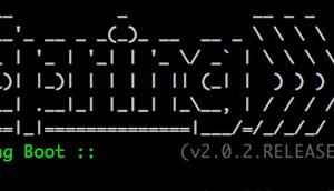 Läuft eine Vaadin Anwendung auch einem Raspberry Zero